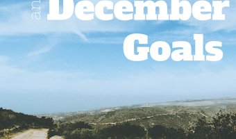November Recap and December Goals