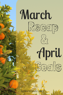 How did I do on my AdSense revenue and wedding fund goals? Find out in this month's March Recap & April Goals!