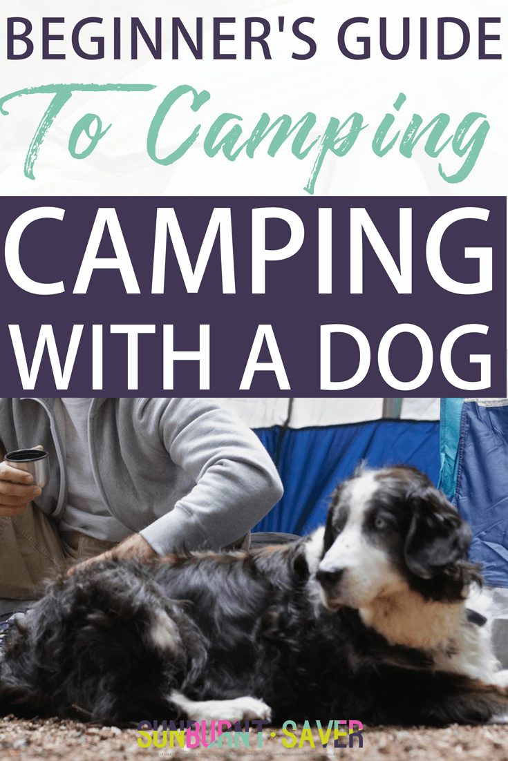 Have you ever wanted to go camping with your dog but didn\'t know what to do, where you could go, or what you would need? Your guide to camping with a dog here! #camping #campingwithadog #frugalcamping #beginnerscamping #howtocamp