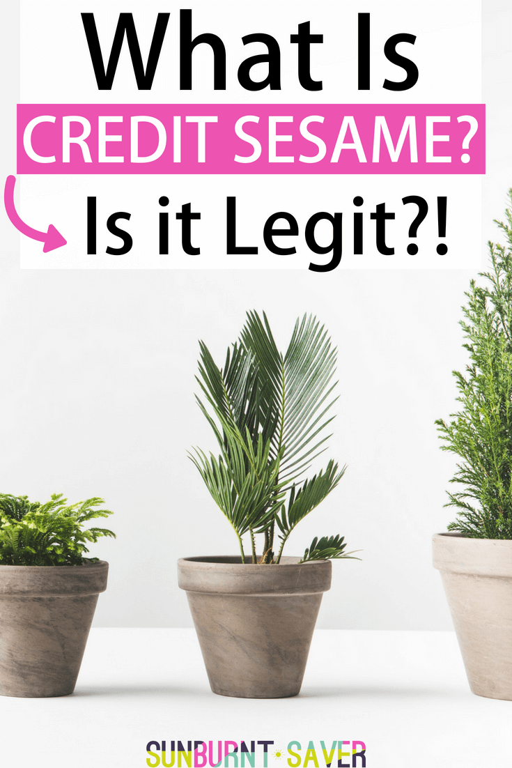 Have you heard of the free credit monitoring site, Credit Sesame? You may have questions like, is Credit Sesame legit? How does it gather information about my credit score? I tackle those questions and more here!